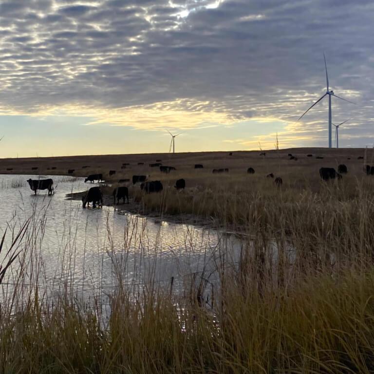 Fiber Optic Services - Wind Power